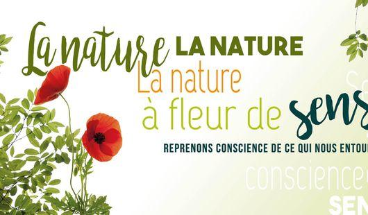 La nature à fleur de sens - Balades à la découverte des plantes sauvages