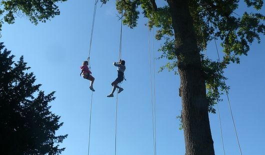 Grimpe d'arbres à l'Arboretum des Barres