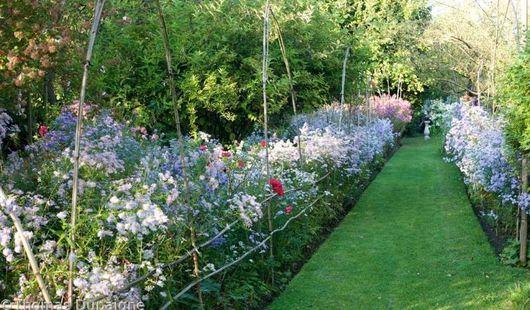 Le Jardin du Petit Chasseur