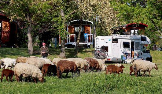 Aire de camping car privée - Camping Touristique de Gien
