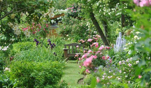 Jardin personnel d'André Eve