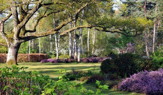 Les grandes bruyères Arboretum