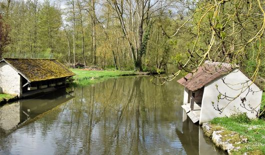 Vallée de l'Essonne