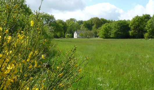 Ancienne maison forestière de Nibelle