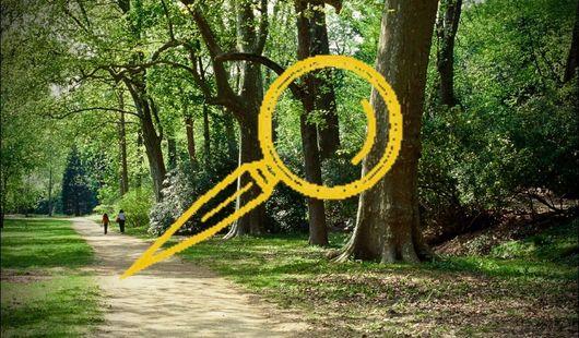 Les parcours à énigmes des parcs du Loiret