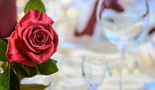 Au fil des roses