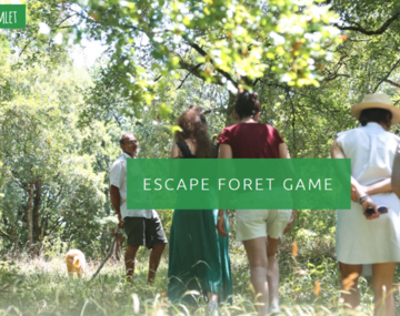 Escape Forest Game