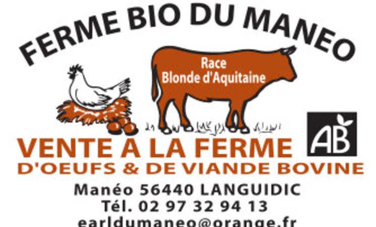 commercants Morbihan ; commerce Bretagne ; Groix