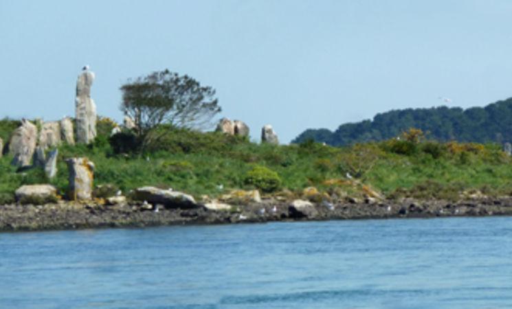 croisieres Morbihan ; croisiere Bretagne ; Groix