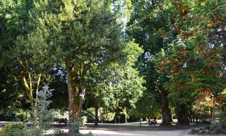 parc-de-kerbihan-14346