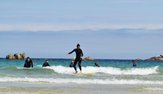 Kerfish Surf Skol